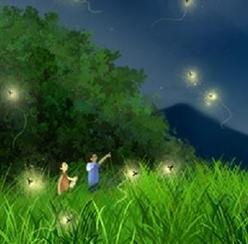 화담숲에서 만나는 한여름 밤의 꿈 - 반딧불이 이벤트(6/15~7/2)