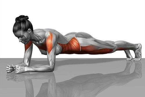 하루 10분 4주 만에 내 몸매를 변형시키는 간단한 운동법 7가지