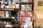 오키나와 나하 마키시공설시장 주점 점장 고양이