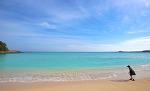 [이키섬 여행] 소소한 아름다움이 가득한 보물 같은 섬 이키섬 3박4일 with 투어리스트