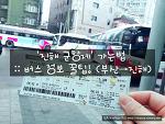 '진해 군항제' 가는법 :: 버스 정보 꿀팁! (부산에서 진해)