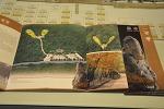 [경기도 남양주] 광릉숲 속에 자리잡은 유네스코 세계유산 '광릉'으로 떠난 가을여행