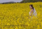 유채밭의 신혼부부
