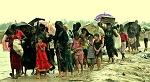 하루 만에 또 다시 1만5천여명의 로힝가 난민이 방글라데시에 도착했다.