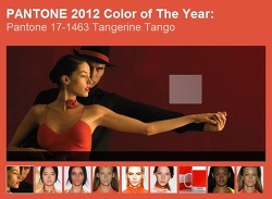 2012 Pantone Color of the Year - Tangerine Tango
