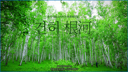 [중국 내몽고 후룬베이얼] 어원커족의 자작나무숲, 러시아족의 목조마을, 건허 根河 /하늘연못의 중국 소도시여행기