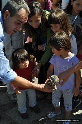 스페인에서 배운 '새'를 사랑하는 법