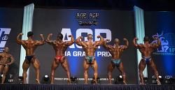 아시아 그랑프리 IFBB PRO LEAGUE (ASIA GRAND PRIX)
