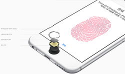 애플 사설수리업체에서 터치 ID 홈버튼을 수리한 아이폰은 iOS 9.2.1 업데이트하면 에러 53으로 아이폰 벽돌됨