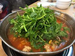 방학동 맛집 종로찌개마을 동태찌개 양많고 진하고 시원한 국물맛!