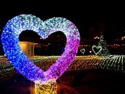 겨울 낭만의 시작, 에버랜드 로맨틱 일루미네이션 축제