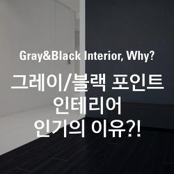 그레이&블랙 포인트 인테리어 인기의 이유?!
