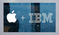 IBM, 연말까지 직원들에게 맥 10만대 보급... '장기적으로 윈도우 PC보다 저렴하다'