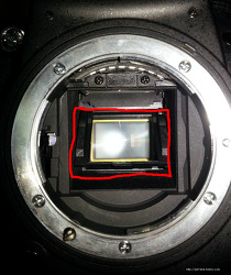 니콘 D7000,D7100,D600의 셔터막 갈림 (갈갈이) 확인 방법