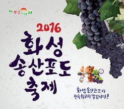 [화성onTV] 2016 화성 송산포도 축제 생.중.계