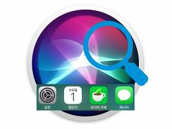 iOS 시리 앱 제안 설정하기