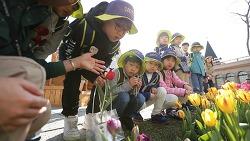 에버랜드, 어린이 '식물사랑단' 모집!