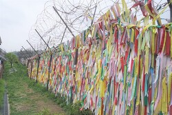 임진각 평화로운쉼터 평화누리공원