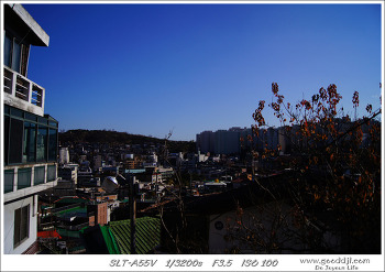 [a55] 2011.11.20 서울 성곽길(장충체육관~낙산공원)