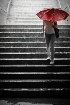 장마철 대비로 지팡이 우산, 지팡이도 되고 우산도 되는 실용템