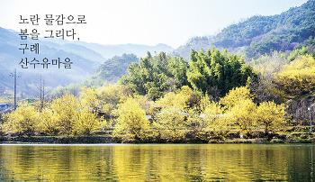 노란 물감으로 봄을 그리다, 구례 산수유마을