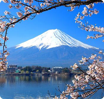 일본 여행 쇼핑 리스트 작성이 막막하..
