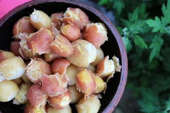 [전원생활] 비 내리는 시골집 아침 # 태풍 쁘라삐룬 # 수확의 기쁨  - 감자. 강낭콩. 나물 2018