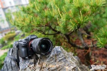 소니 A7R3 미러리스 카메라, AF 성능 살펴보니