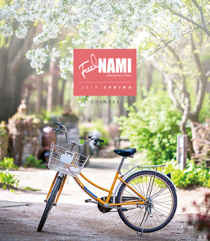 [NEWSLETTER] 2018 NAMI, Spring (Chinese)