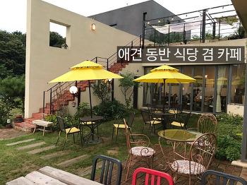 애견 동반 식당 겸 카페, 헤이리마을에 있는 브리즈힐
