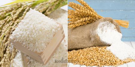 [푸드칼럼] 홍경희 교수의 '건강한 영양학' 시리즈 ⑨ 밀가루 음식은 살찌나요?