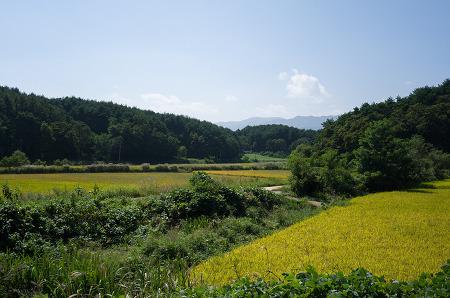 180917 _ 소양강, 그리고 홍천 '장원막국수'