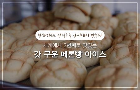 한화리조트 산정호수 안시에서 맛보자! 세계에서 2번째로 맛있는 갓 구운 메론빵 아이스