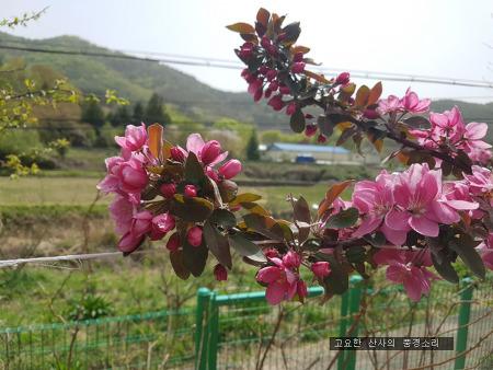 주말 농장, 행복한 텃밭의 봄