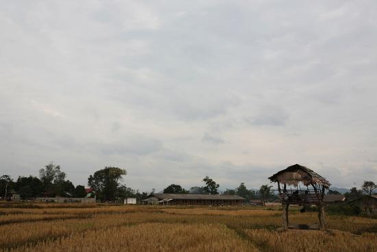 [하노이-라오스] 빗 속 베트남 탈출기!