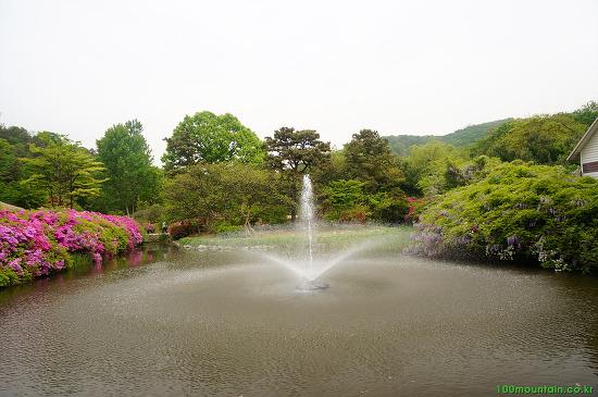 인천대공원 수목원 ·호수 나들이