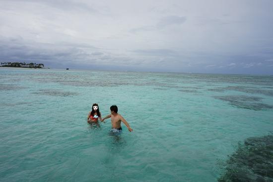몰디브 신혼여행 저렴한 리조트(5) / 울후벨리 리조트(자쿠지 워터빌라), 만타가오리