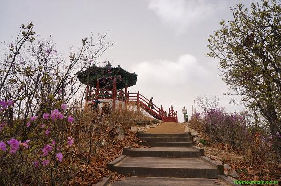 인천 종주길 2코스 : 징매이고개 생태통로 ~ 중구봉 ~ 천마산 ~ 루원교