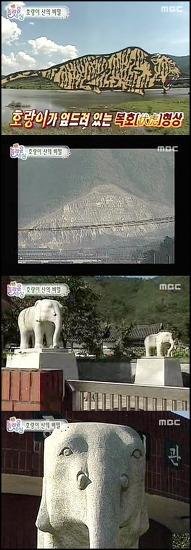 호랑이 저주받은 마을...코끼리 석상이 구원