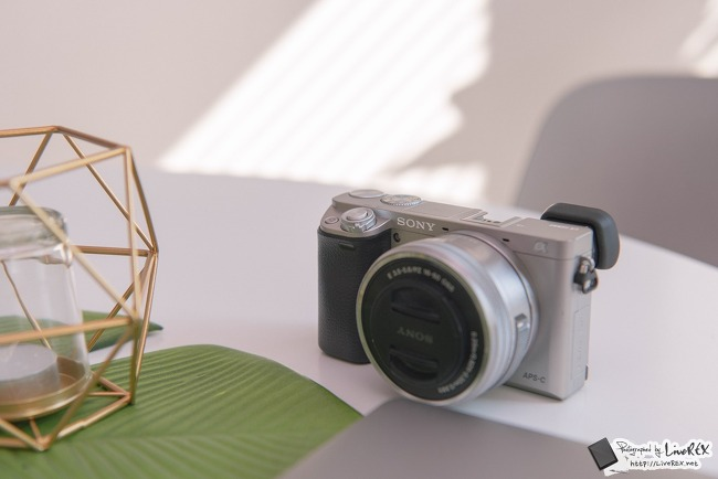 미러리스 카메라 소니 A6000 매력포인트