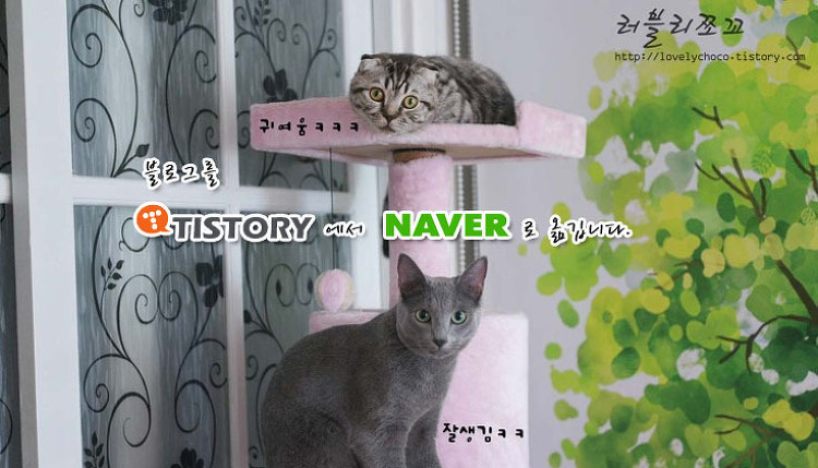 블로그를 Tistory에서 Naver로 옮깁니다.