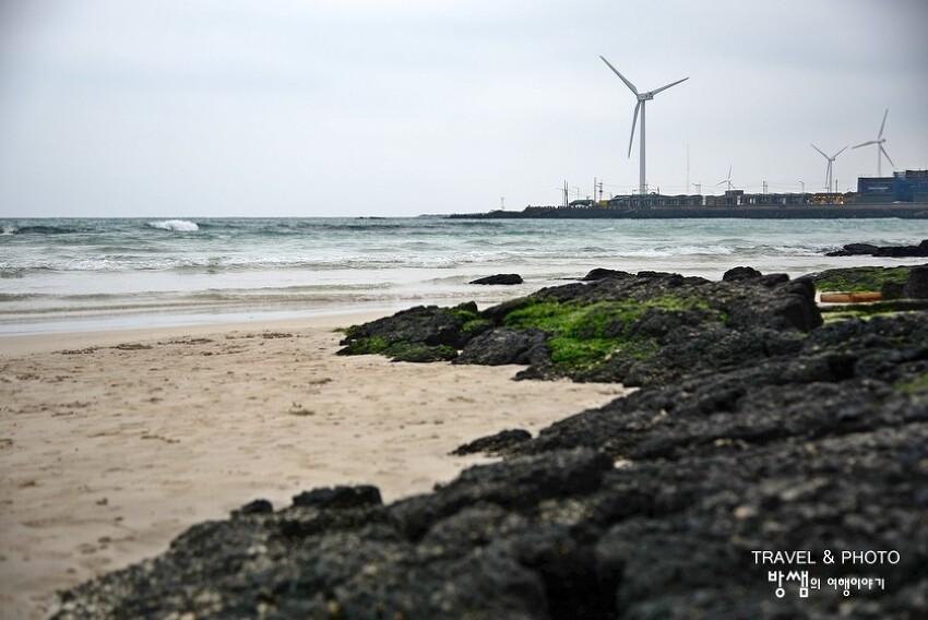 제주 월정리해변, 겨울바다의 매력에 흠뻑 빠져보는 시간