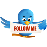 tweet follow