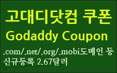 고대디닷컴 할인쿠폰(Godaddy Coupon) - .com/.net/.in/.mobi 도메인 신규등록 2.67달러