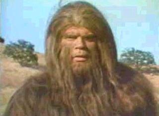 내친구 바야바(bigfoot and wildboy)
