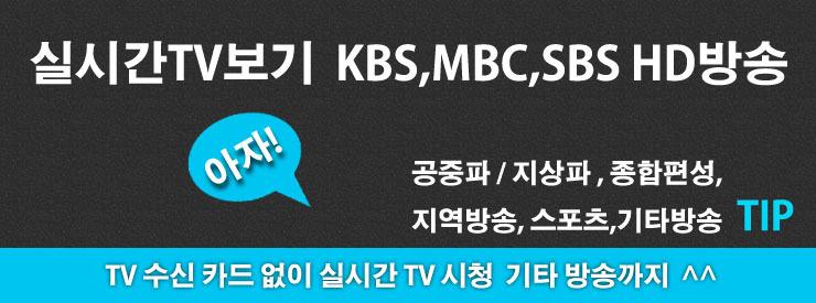 실시간TV보기