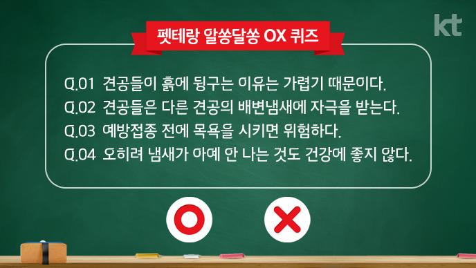 펫테랑 알쏭달쏭 OX 퀴즈