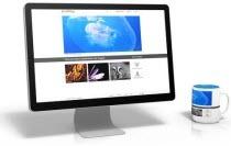 웹디자인기능사 기출문제 학습