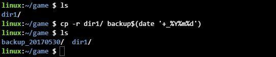 리눅스 cp 명령어로 데이터 백업하기
