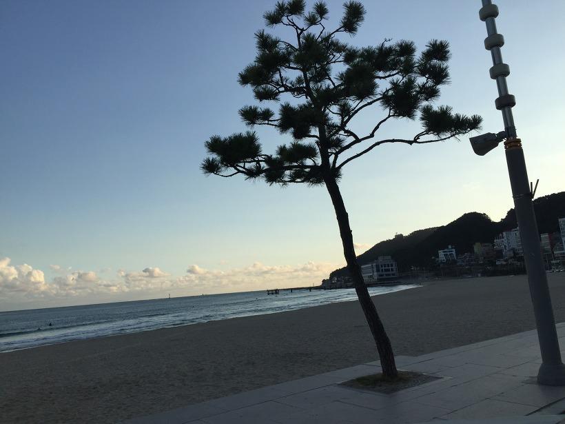 송정 바닷가